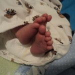 baby toes wordless wed