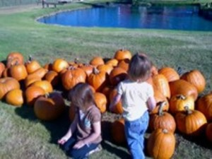 Boo!  Best graveyard tours, pumpkin patches and orchards in Houston