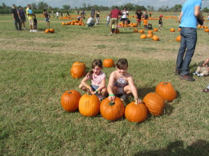 Dewberry Farm pumpkin patch and Christmas tree farm