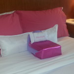 American Girl Package at Westin Hotels