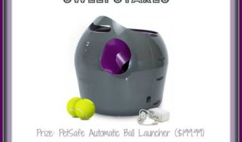 Having a Ball with PetSafe Automatic Ball Launcher Sweepstakes