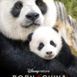 Free printable Born In China activity book and educators guide: In Theaters April 21 #BornInChina