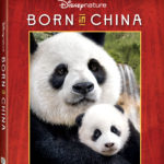 Born in China Free Printable Activity Guide and Now Available on Blu-Ray #Disneynature #BornInChina