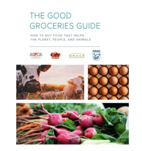 Good Grocery Guide